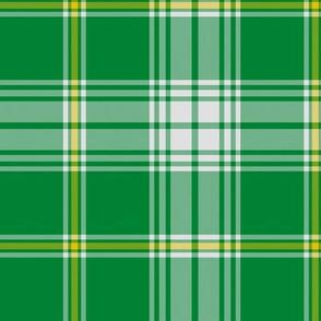 St. Patrick tartan