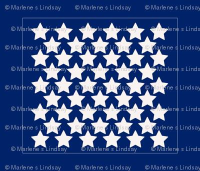 Navystars_preview