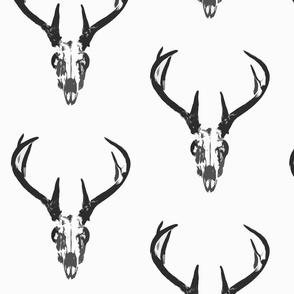 Deer Skull Big