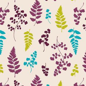 Ferns on Cream