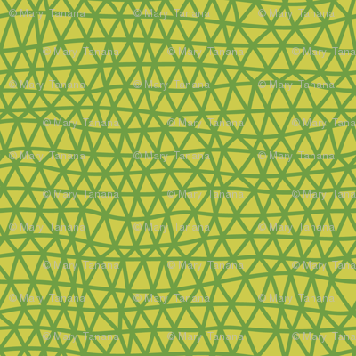 Folky Dokey-Woven in Lime-Dream colorway
