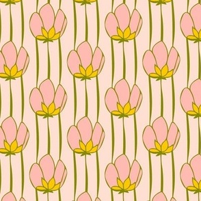Buttercups Stripe Rosa