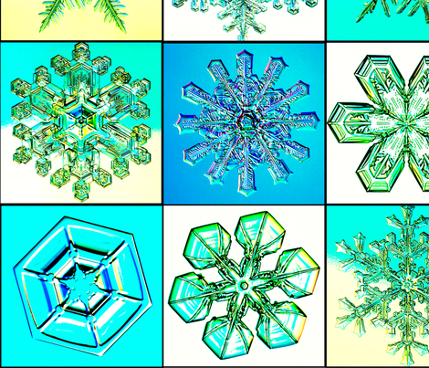 snowflakes14 fabric by craftyscientists on Spoonflower - custom fabric