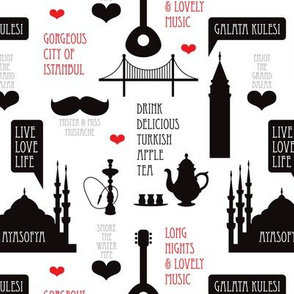 Cool turkish Istanbul urban city travel icons illustration black and white