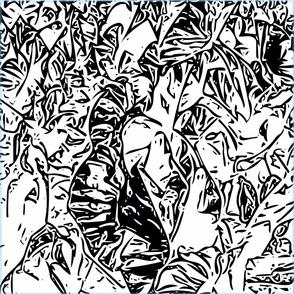 Croton Black & White