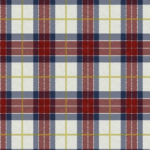 Classic Tartan in Red and Blue / Half Scale