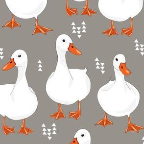DuckGrey