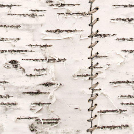 Stitched Birch Bark fabric by willowlanetextiles on Spoonflower - custom fabric