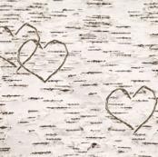 Love, Carved in Birch