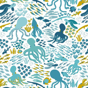 Cephalopods world