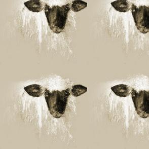 ewe messing with me