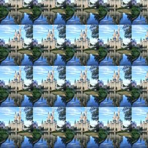 Castle Reflection Photo
