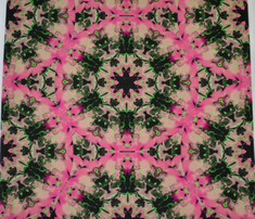 Rmarbleized_kaleidoscope_star__pink_and_green_comment_631532_thumb