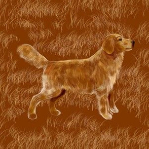 Golden Retriever, Custom 6 in sq
