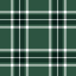 Glen Moy trade tartan - custom colorway
