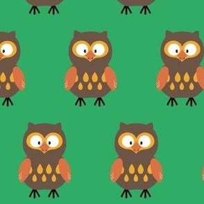 Brown Pumpkin Owl
