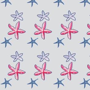 Starfish in Grey