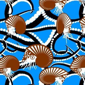 Nautilus Amid the Tentacle Tangle