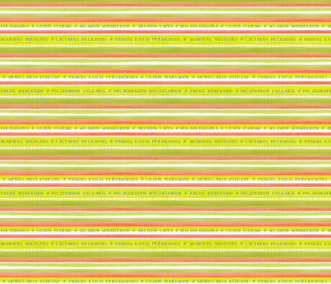 Flora Stripe fabric by snowflower on Spoonflower - custom fabric