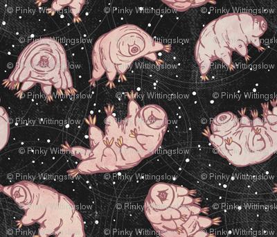 Tardigrades in Space - black