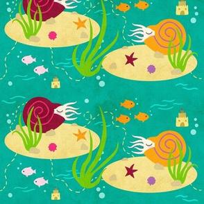 Celebrate Cephalopods
