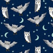 Rnight_owl_shop_thumb