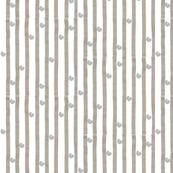 Stripes and ammmonites