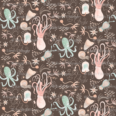 cephalopod celebration