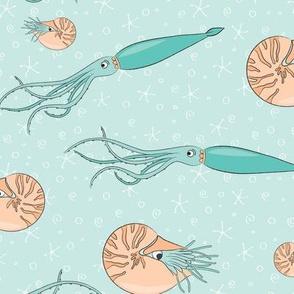Nautilus meets Squid