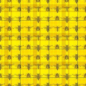 Tartan Bees (and Wasps!)