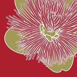 Lehua Ohia Blossom