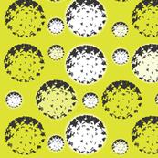 Diatomaceous Popcorn Balls - Chartruse