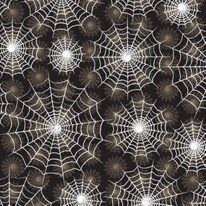 Spiderwebs 2