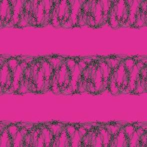 Barbed Wire on Bubblegum Pink