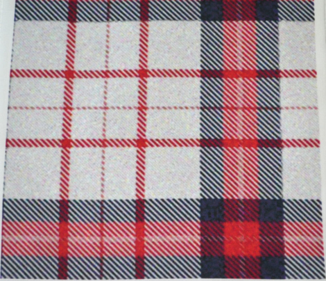 Red White and Blue Plaid REV