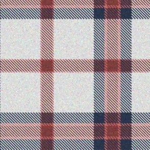Pink, White and Blue Plaid 3