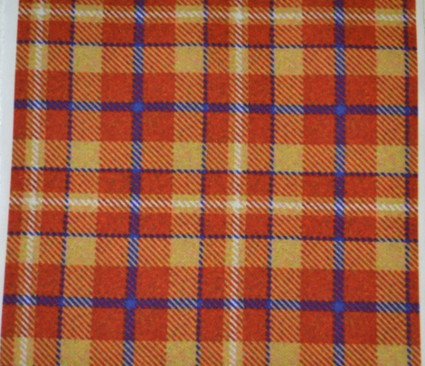 Pumpkin, Lemon and Blueberry Plaid 2