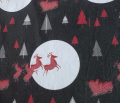 Santa reindeer with sleigh