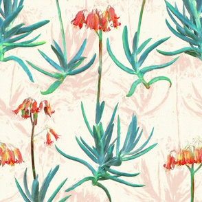 Flowering Succulents in Coral, Cream and Green