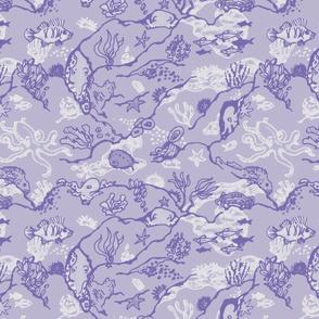 Octopus Alley Lavender