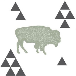 Geometric Buffalo in Sage