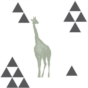 Geometric Giraffe in Sage