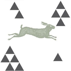 Geometric Hare in Sage
