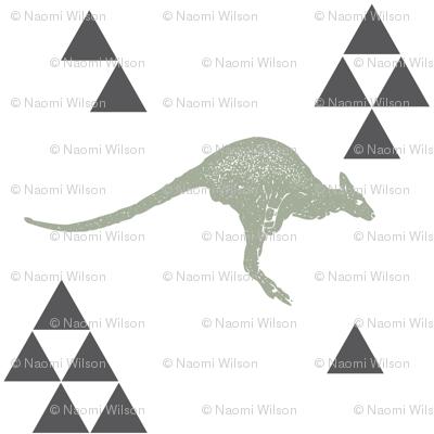 Geometric Kangaroo in Sage