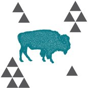 Rgeometric_buffalo_in_teal_shop_thumb
