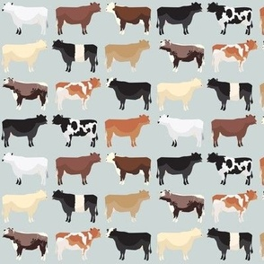 Farmhouse Cows