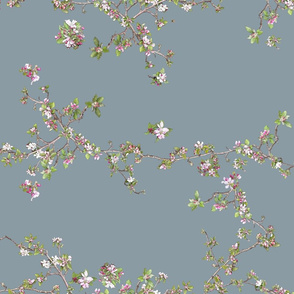 Apple Blossom on blue 8b9ba4