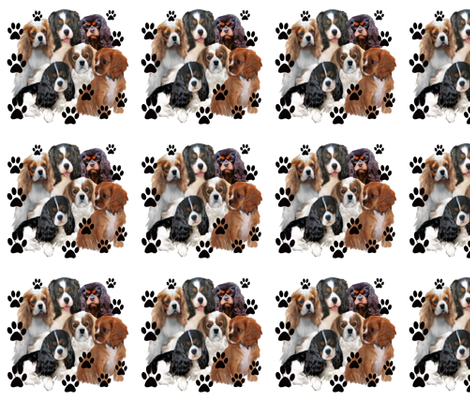 Cavaliers Colors fabric by dogdaze_ on Spoonflower - custom fabric