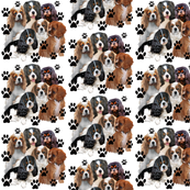 Paw Print Fabric Wallpaper Amp Gift Wrap Spoonflower