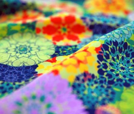 Diatom Blooms
